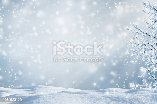 silver abstract winter idyll