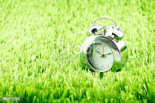 607492948 istock photo Silver alarm clock on green grass 480014130