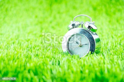 607492948 istock photo Silver alarm clock on green grass 480542828