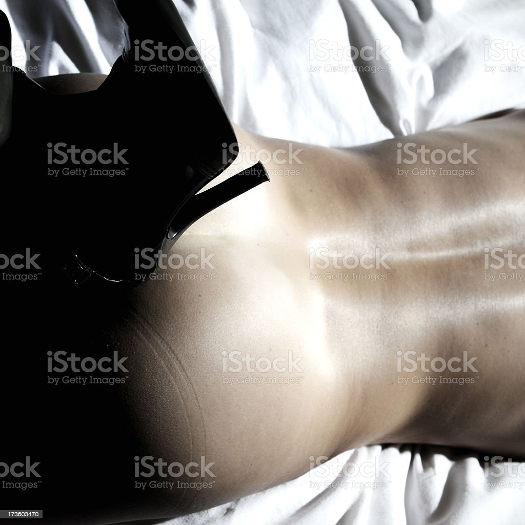 silver back royalty-free stock photo