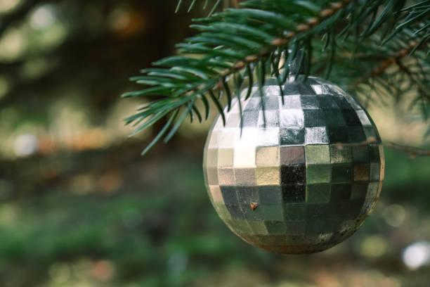 silberne christbaumkugel hängen an einem ast der kiefer - zitate weihnachten stock-fotos und bilder