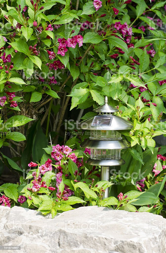 silver coloured outdoor solar lamp amongst flowers royalty-free stock photo