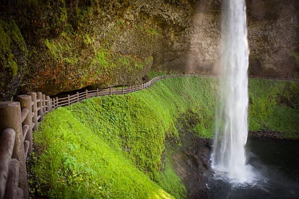 Silver Falls State Park in Oregon. stock photo