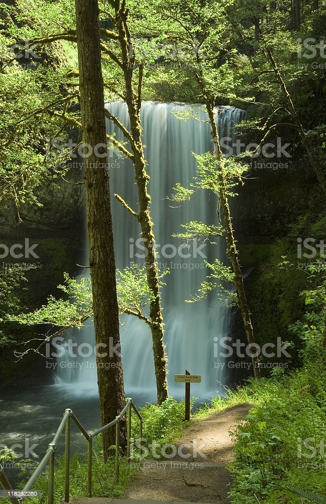 Silver Falls State Park, Lower South Waterfalls royalty-free stock photo