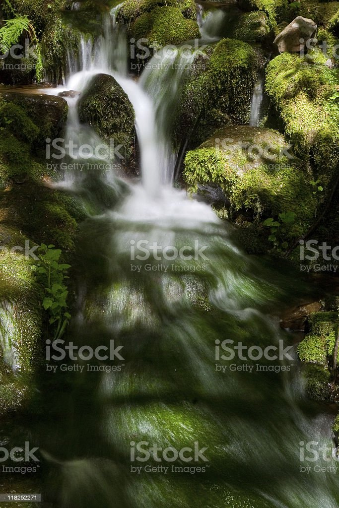 Silver Falls State Park royalty-free stock photo