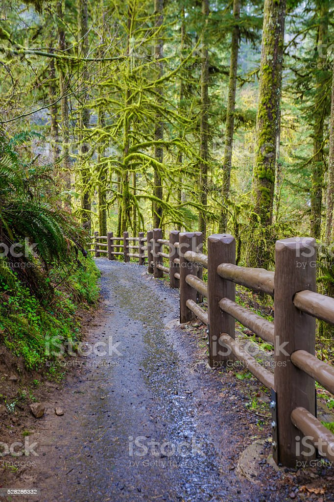 Silver Falls State Park stock photo