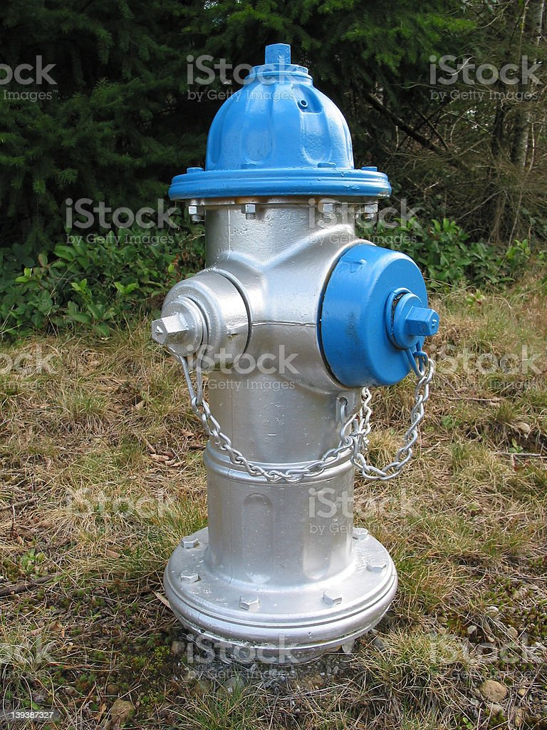 Silver Fire Hydrant royalty-free stock photo