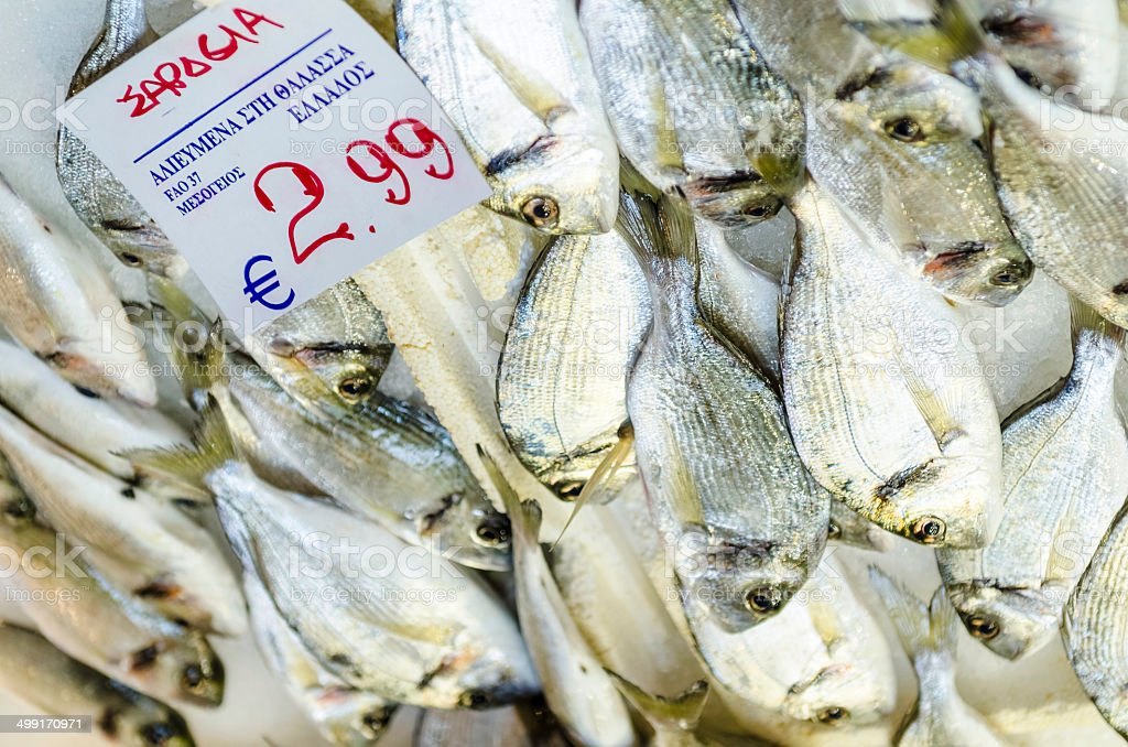 Silver fishes. stock photo