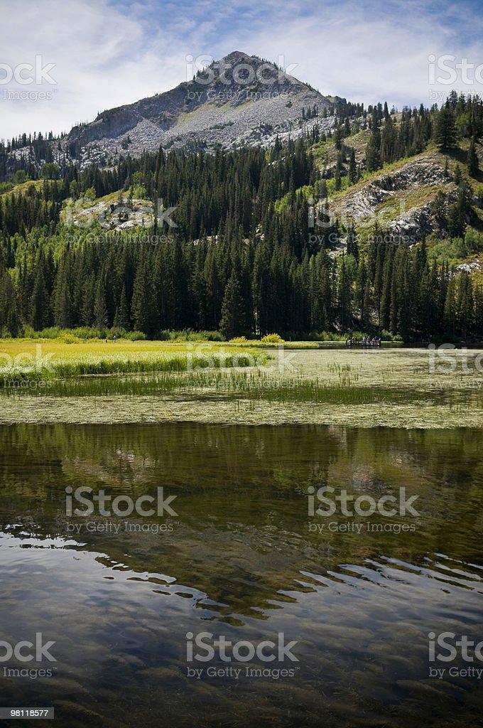 Silver Lake Reflection royalty-free stock photo