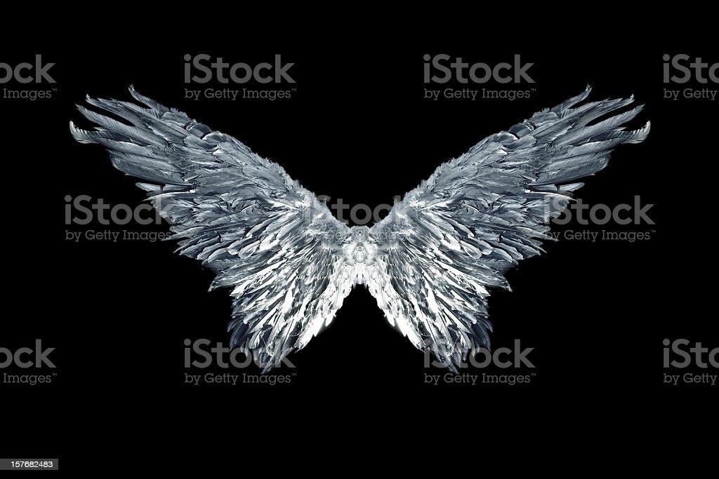 Silver Metallic Angel Wings on Black stock photo