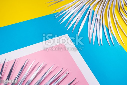 istock Silver palm branch on a background. 1208683787