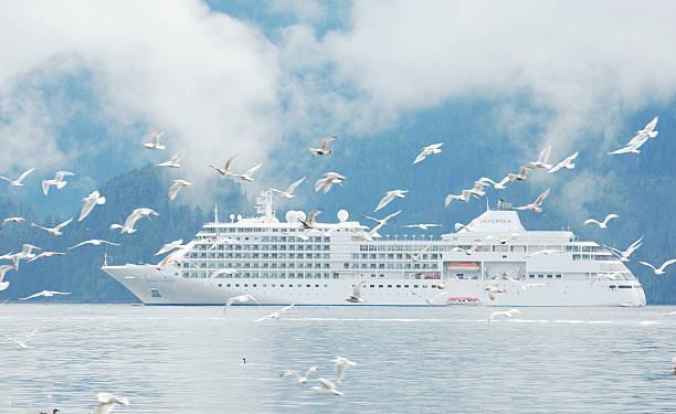 Silberschatten Kreuzfahrtschiff in der Nähe der Küste von Alaska – Foto