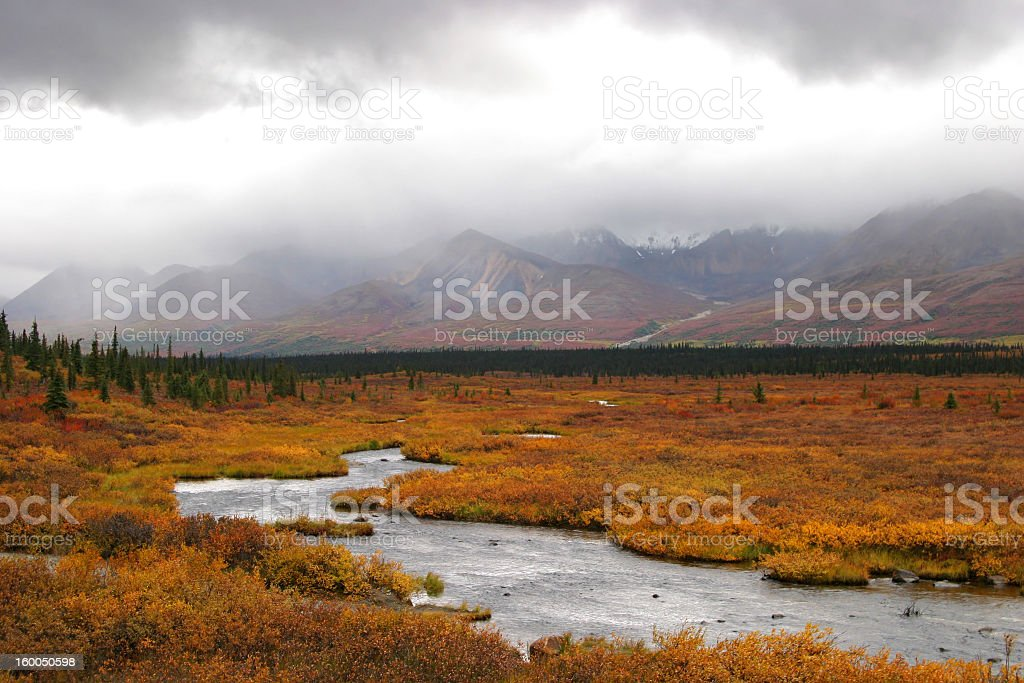 Silver stream deep in Alaskan tundra stock photo