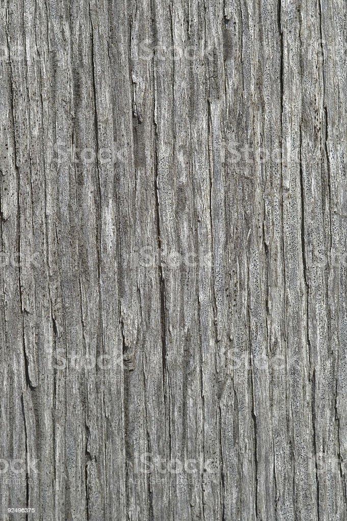 Silver wood grain royalty-free stock photo