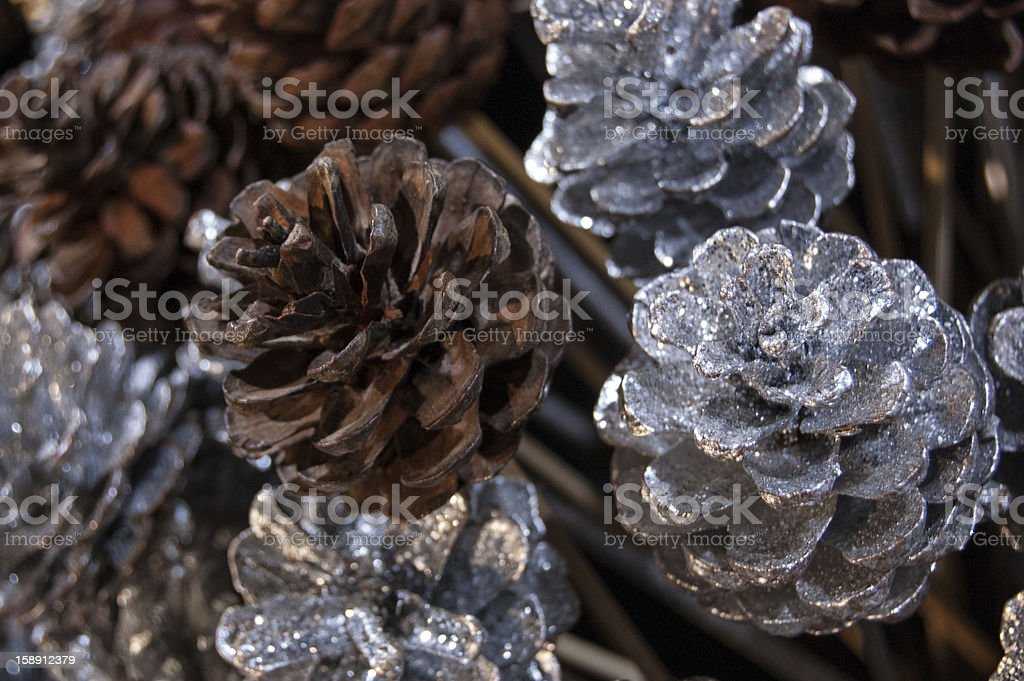 Silvered and natural pine cones on stick. Christmas background. royalty-free stock photo