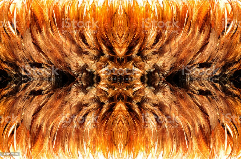 simetry brown fur from feather stock photo