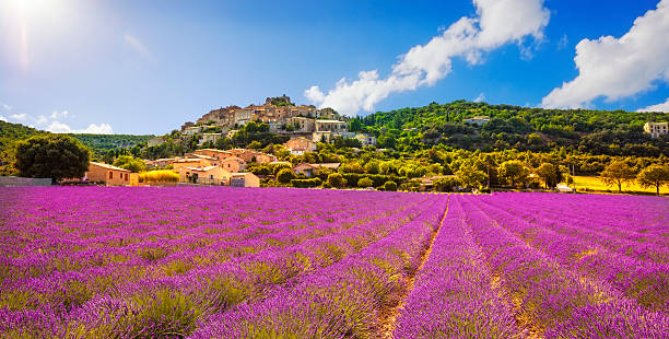 Simiane la Rotonde village and lavender panorama. Provence, Fran Simiane la Rotonde village and lavender panorama. Provence, France, Europe provence alpes cote d'azur stock pictures, royalty-free photos & images