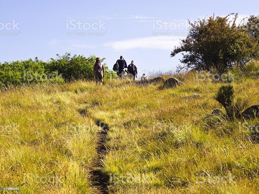 Simien Trekking royalty-free stock photo
