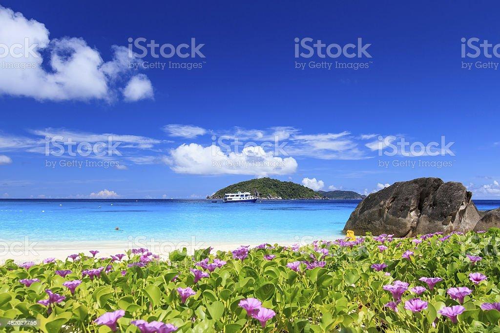Similan Island beach stock photo