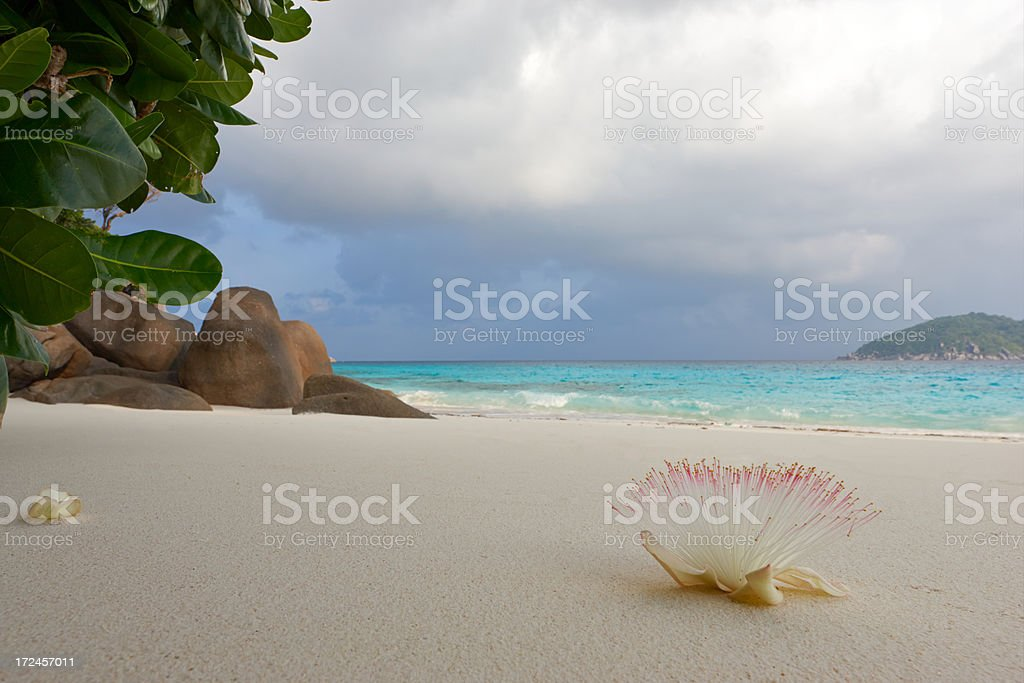 Similan islands. Phuket. Thailand royalty-free stock photo