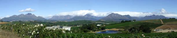 Simonsberg and Hottentots Holland mountains, Stellenbosch, Western Cape, South Africa stock photo