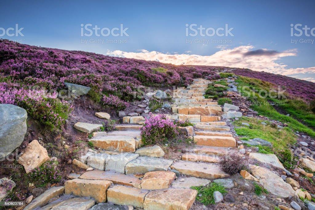 Simonside Hills path to the ridge stock photo