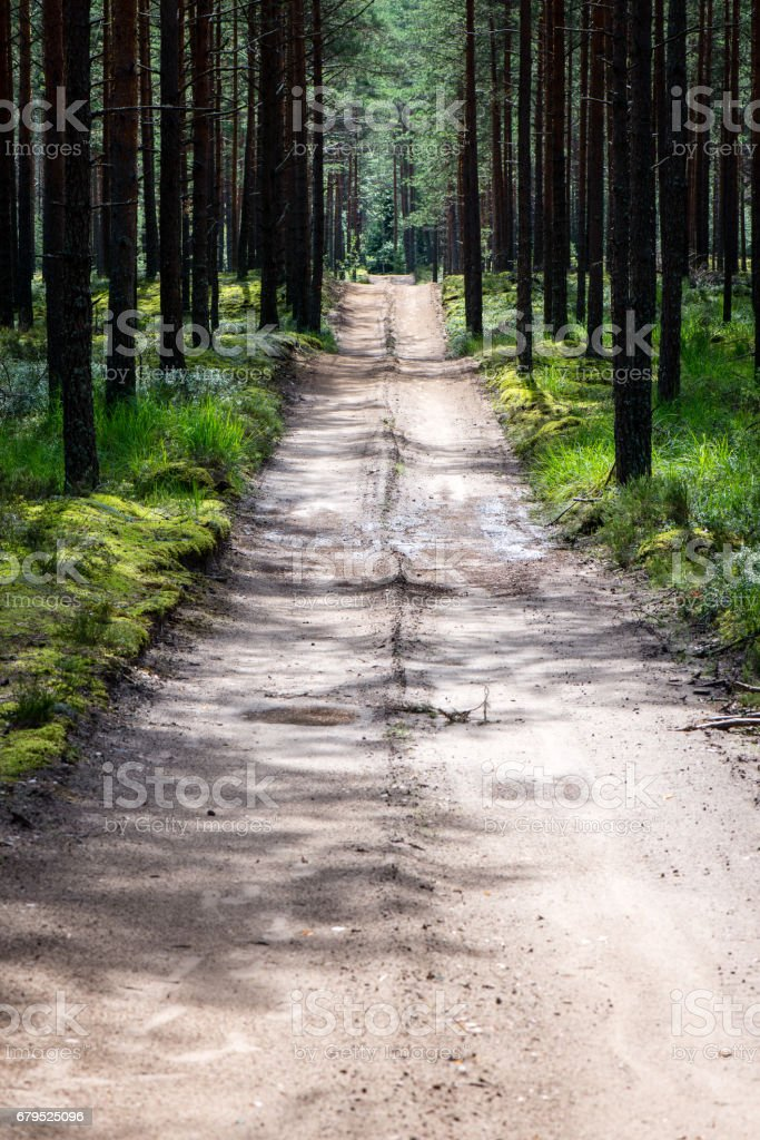 simple country road in summer royalty-free stock photo