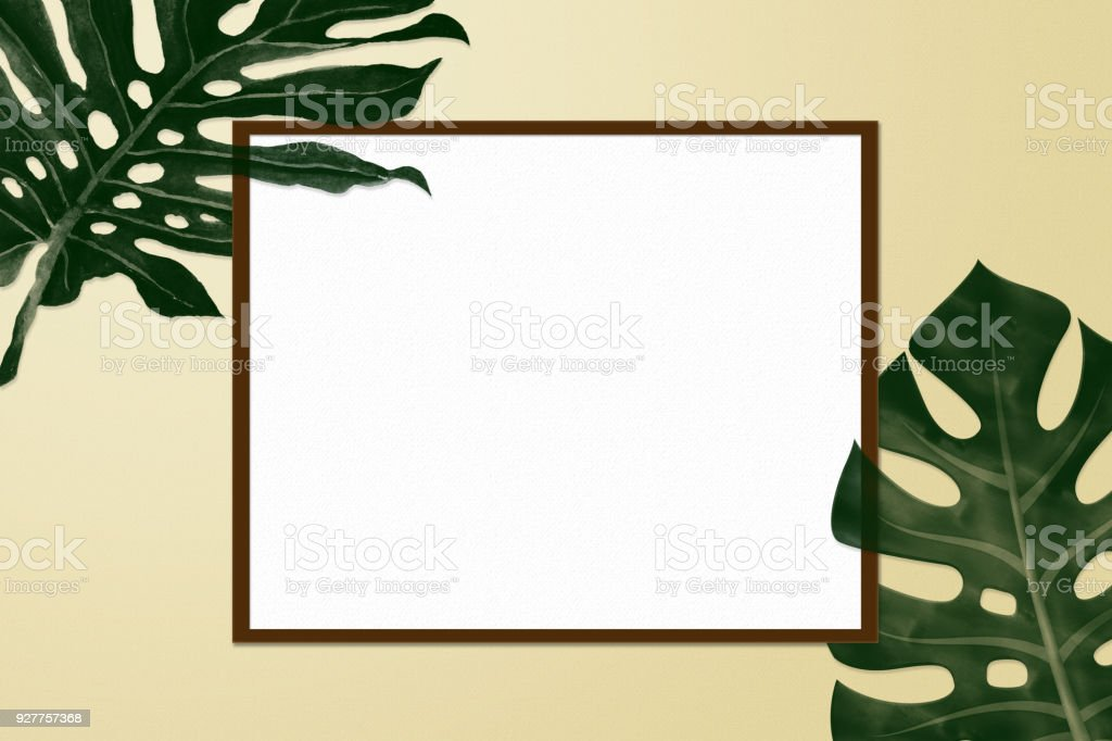 Simple Creative Nature Frame Made Of Summer Tropical Palm And Fern ...