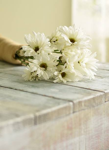 Simple Daisy Bouquet stock photo