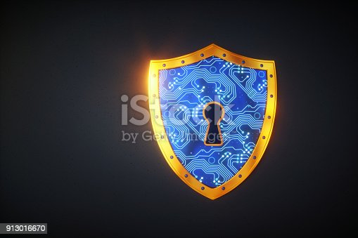 istock Simple digital shield 913016670