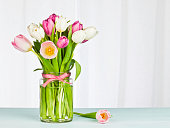 Tulips in glass jar in front of window with sheer curtains. Great for Mother's Day or Easter.