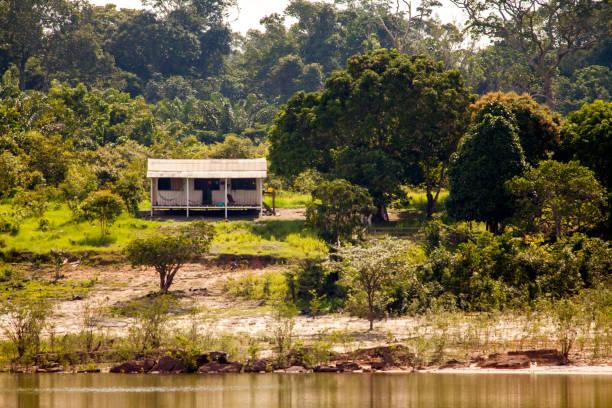 Simple house on Amazon river island stock photo