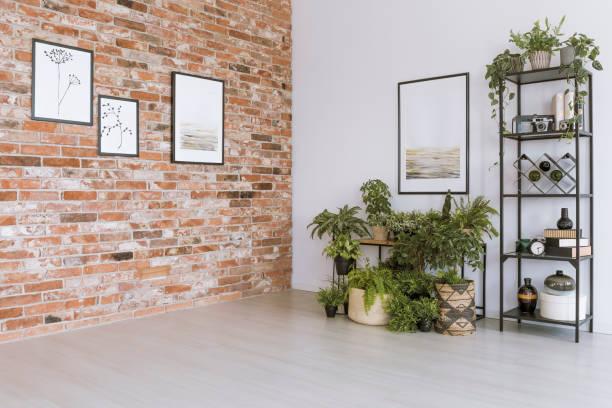 simple living room with pictures - róg zdjęcia i obrazy z banku zdjęć
