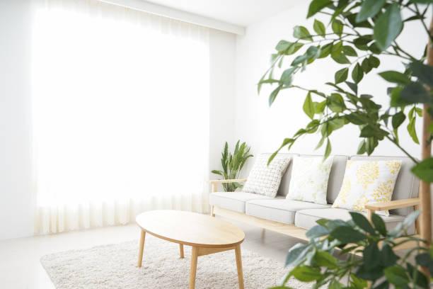 誰もシンプルな部屋 - ソファ 無人 ストックフォトと画像