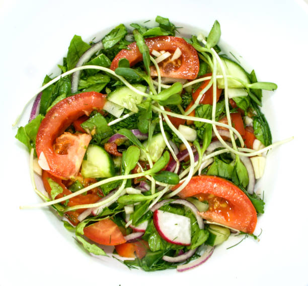 A simple salad of tomatoes, cucumbers, red onions, peppers, radish, dill, basil, garlic and seasoned with lemon juice, olive oil and balsamic vinegar A simple salad of tomatoes, cucumbers, red onions, peppers, radish, dill, basil, garlic and seasoned with lemon juice, olive oil and balsamic vinegar. advisable stock pictures, royalty-free photos & images