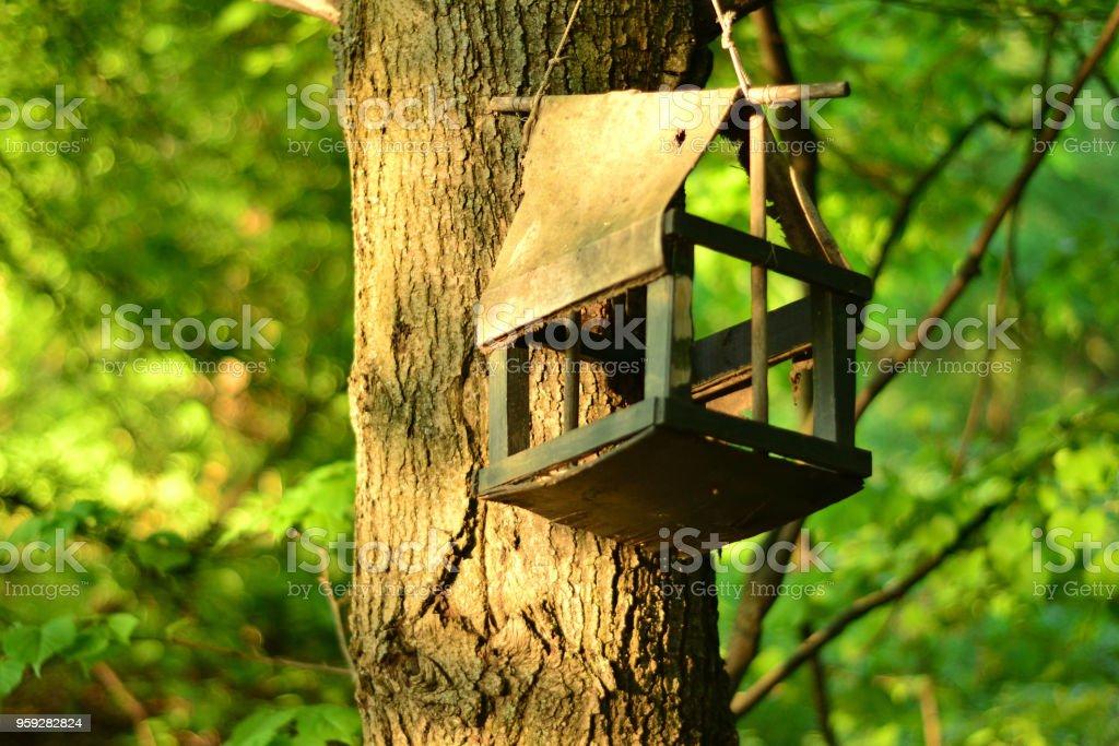 Simple still-life photo of old birdhouse on the tree stock photo