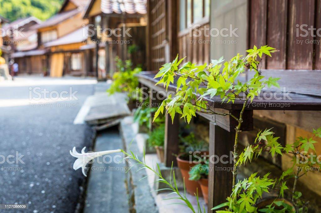 Simple Street Garden, Ohmori, Iwami Ginzan stock photo