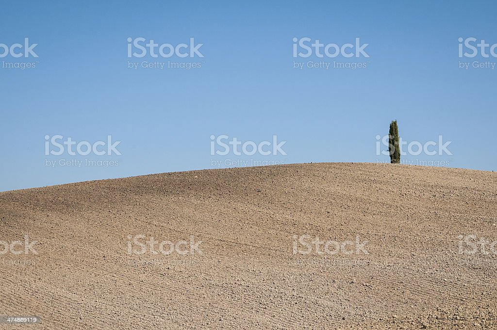 Simple Tuscany landscape in a summer day stock photo