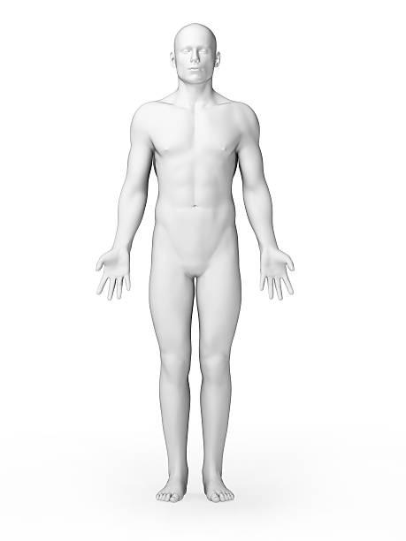Homme corps blanc tout simple - Photo