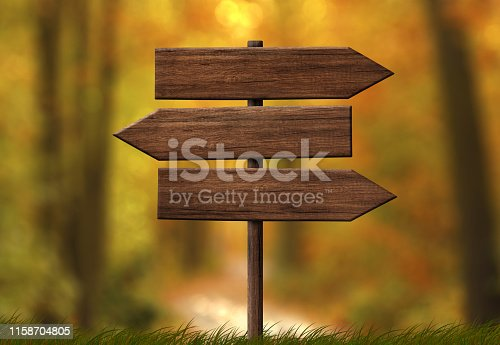 istock Simple wooden triple direction arrow roadsign with autumn forest background 1158704805
