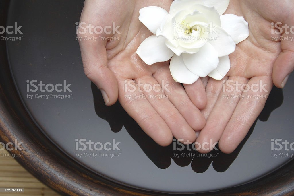 simply hands in bowl royalty-free stock photo