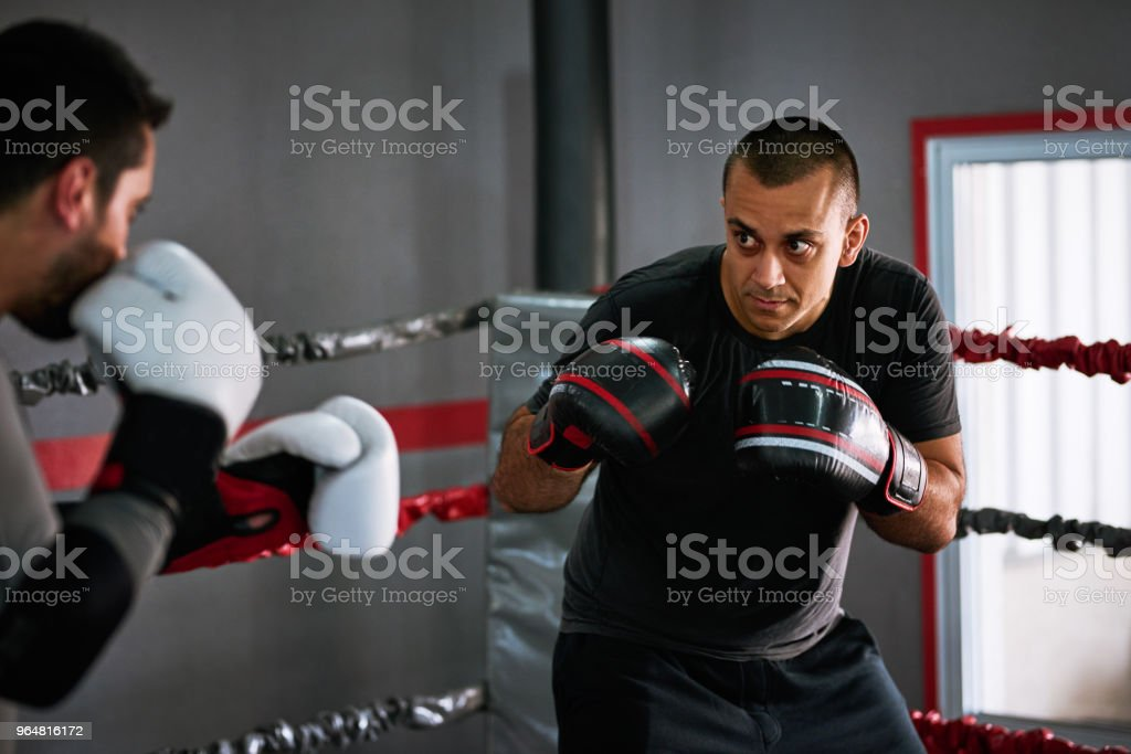 Simulating real fighting situations royalty-free stock photo