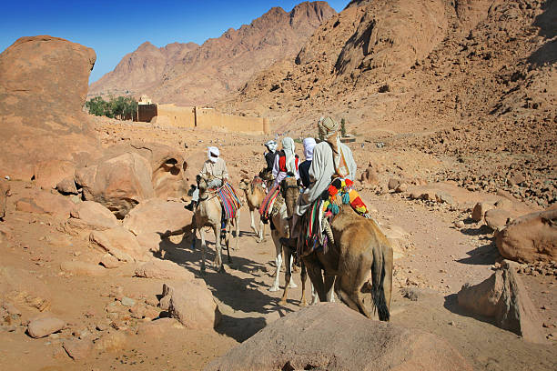 Beduini Synaj – zdjęcie
