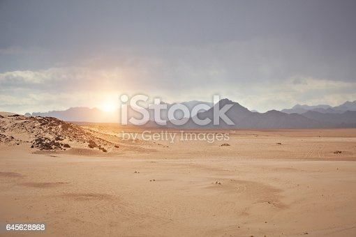 Sinai desert at sunset