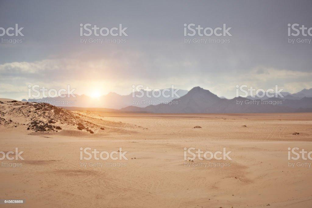 Wüste Sinai  – Foto