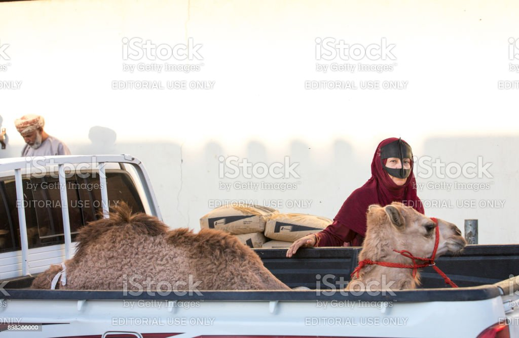 Sinaw, Oman, November 30th, 2017: bedhouin woman with her camel at a market stock photo