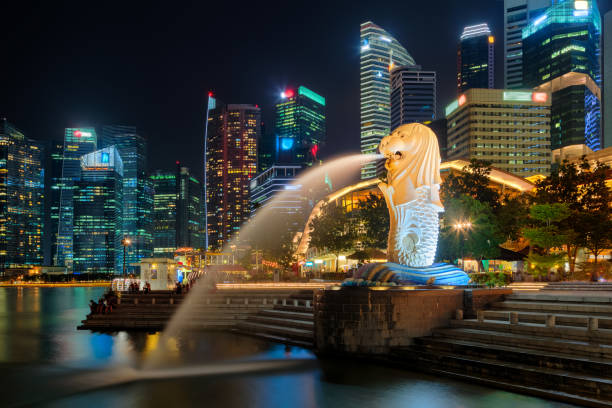 Singapore city downtown and Merlion Park Singapore, Singapore - October 15, 2017: Singapore city downtown and Merlion statue at night merlion statue stock pictures, royalty-free photos & images