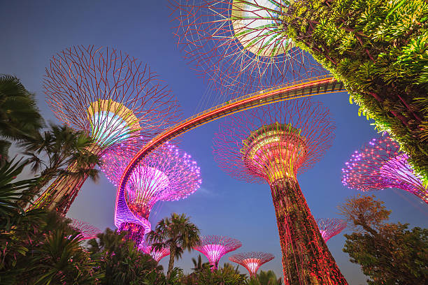 Singapore garden by the bay stock photo