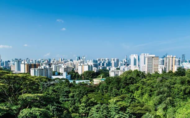 緑の森のスカイラインのシンガポール hdb 住宅ビル - 緑 ビル ストックフォトと画像