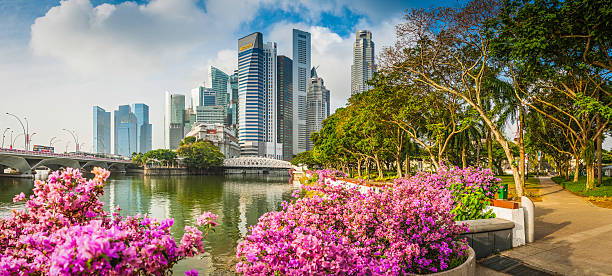 singapore marina bay cbd skyscrapers crowded cityscape downtown core panorama - marina bay singapore stockfoto's en -beelden